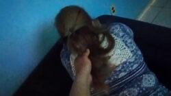 Cogiendo a la señora que me corta el pelo